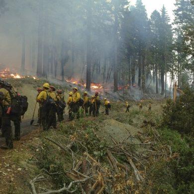 fire | arson